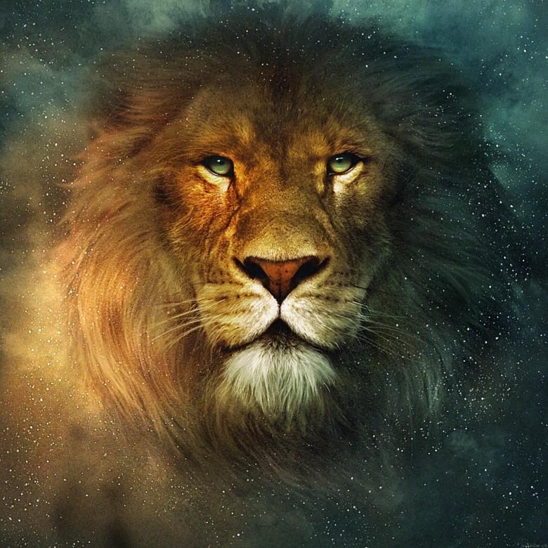 narnia-lion