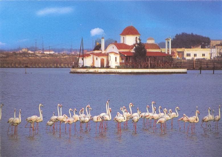 Το εκκλησάκι της Παντάνασσας στην ευλογημένη λίμνη Βιστωνίδα. Μπροστά φαίνονται μερικά φλαμίνγκο (φοινο