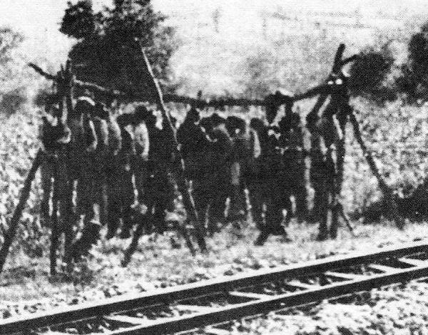 Απαγχονισμένοι Σέρβοι από τους Ούστασι στο στρατόπεδο εξόντωσης του Γιασένοβατς