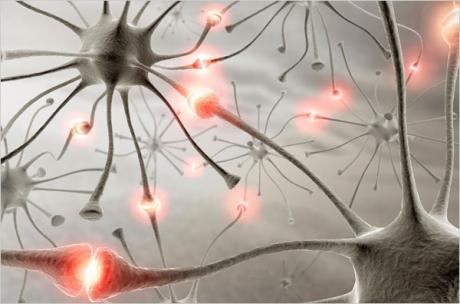 Αποτέλεσμα εικόνας για εγκέφαλος
