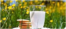 milk_glass225w