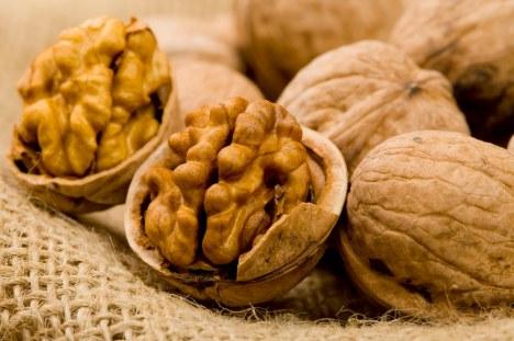 walnut karydia