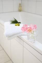 bath_tube_386_103007