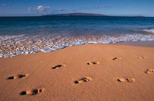 footsteps_in_the_sand