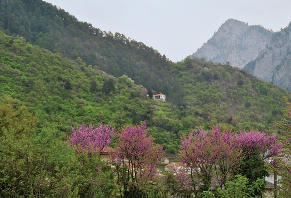 Το εκκλησάκι, ακριβώς απέναντι από το σπίτι του μοναχού, που σύμφωνα με όσα είχε πει ο μοναχός , του είχε αποκαλυφθεί ο Χριστός