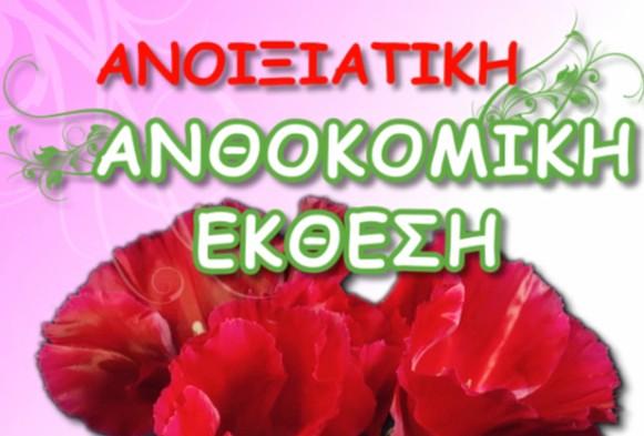 tromaktiko19